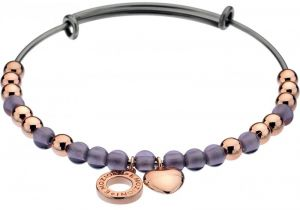 Hot Diamonds Oceľový náramok Emozioni Rose Gold Purple Glass DC105