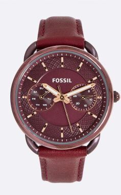 Fossil - Hodinky ES4121