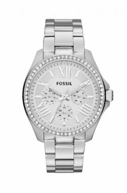 Fossil - Hodinky AM4481