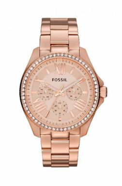 Fossil - Hodinky AM4483