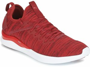 Fitness Puma  IGNITE FLASH EVOKNIT