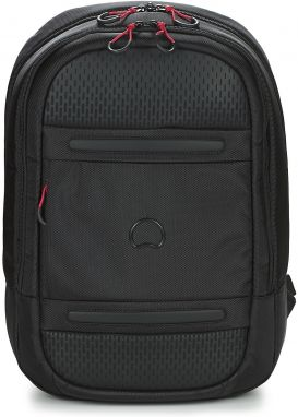 Ruksaky a batohy Delsey  MONTSOURIS BACKPACK