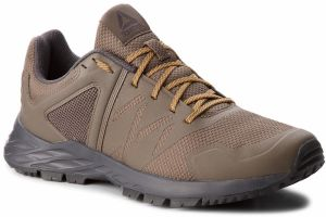 Topánky Reebok - Astroride Trail CN4579 Grey/Coal/Gold