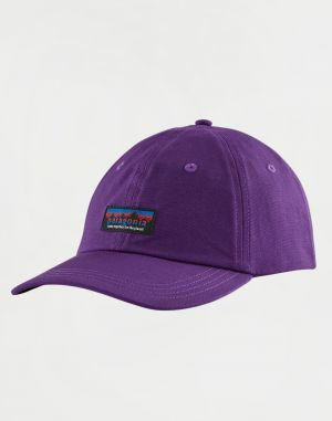 Patagonia Together for the Planet Label Trad Cap PUR