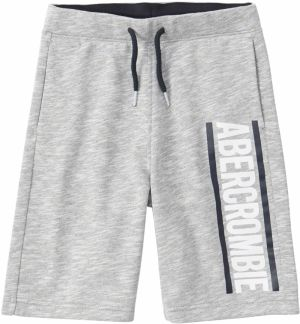 Abercrombie & Fitch Nohavice 'SB19-FLEECE LOGO SHORT 6CC'  sivá