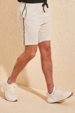 Trendyol Grey Men's Shorts & Bermuda